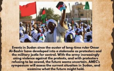 THE DECEMBER 2018 REVOLUTION AND SUDANESE PROFESSIONALS IN THE DIASPORA: REFLECTIONS FROM A RELUCTANT ACTIVIST